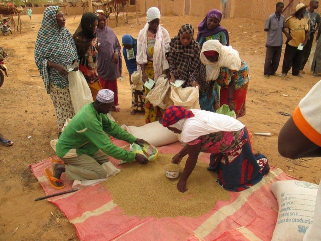 Séance de distribution gratuite de vivres dans un village au Niger